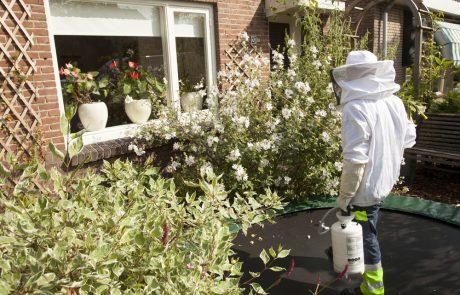 האם מותר להדביר דבורים על פי חוק?