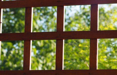 פרגולות עץ גושני – למה דווקא הן כל כך נפוצות