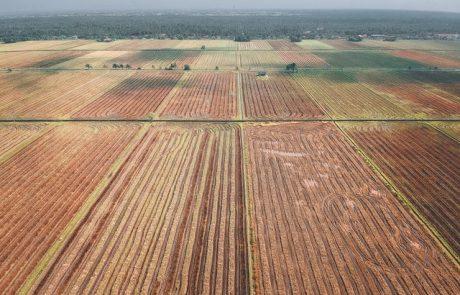 מה חשוב לדעת לפני שרוכשים קרקע חקלאית?