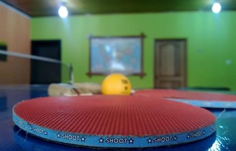 כיצד לבחור שולחן טניס מקצועי