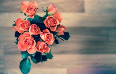 מדריך הזמנת פרחים אונליין בקליק